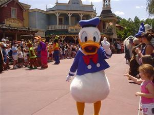 duck-thumb-300x225.jpg